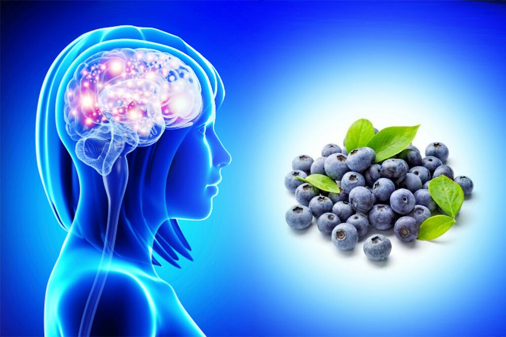 blueberries benefits for brain and memory power