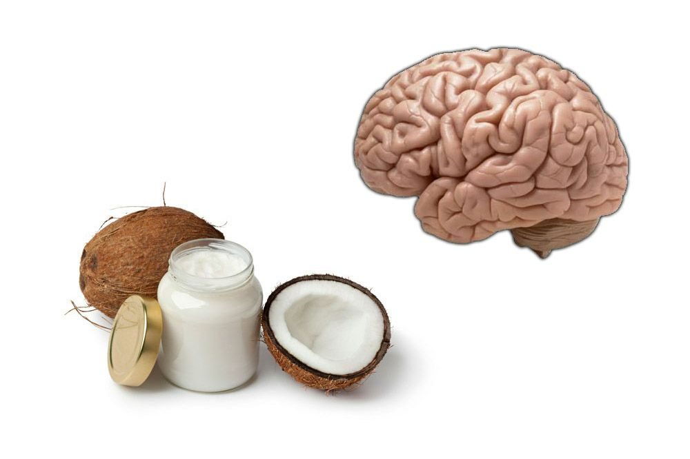 Coconut Oil Improves Memory and Brain Function