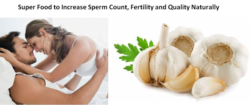 Why Garlic is a Super Food to Increase Sperm Count, Fertility and Quality Naturally
