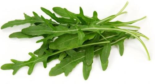 Health Benefits of Arugula leaf