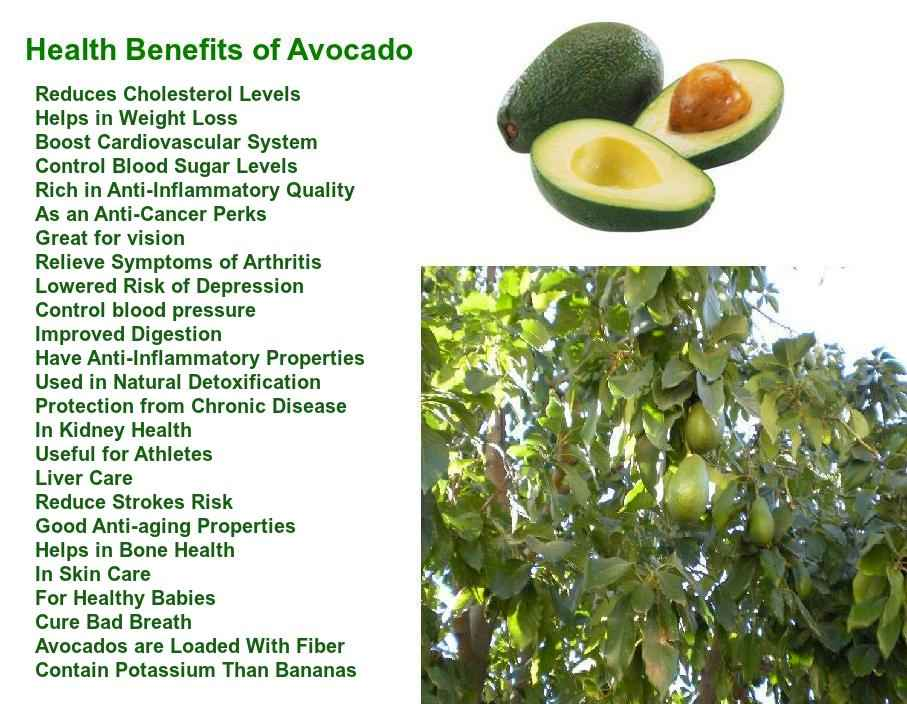 is an avocado a fruit why is fruit healthy