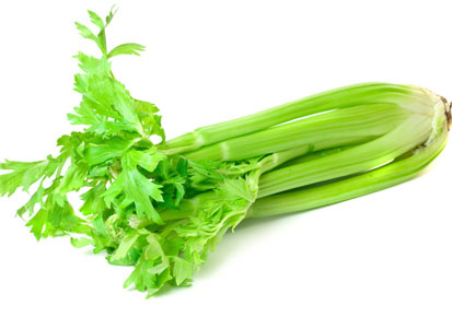 Health Benefits of Celery Plant