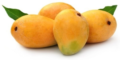 Mango Fruit Images, Photos, Pics, Picture
