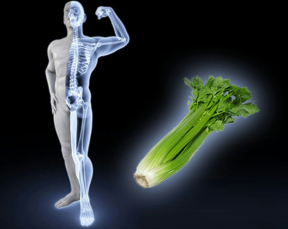Why is Celery Good for Your Bones