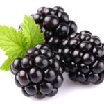 health benefits of blackberries fruit