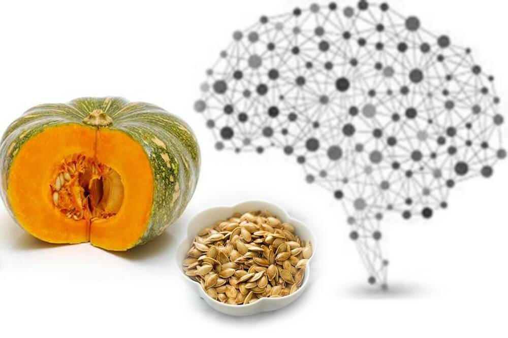 Why are Pumpkin Seeds Good for Your Brain
