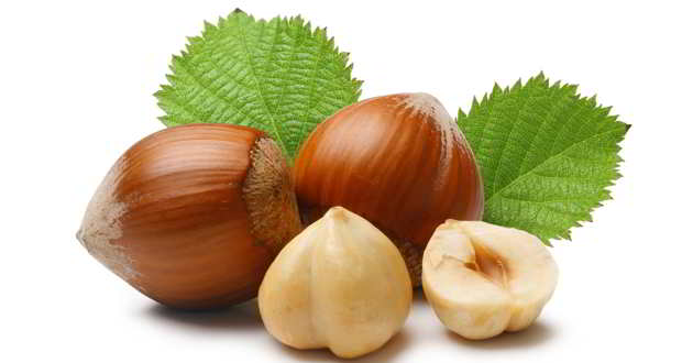 Health Benefits of Hazelnuts
