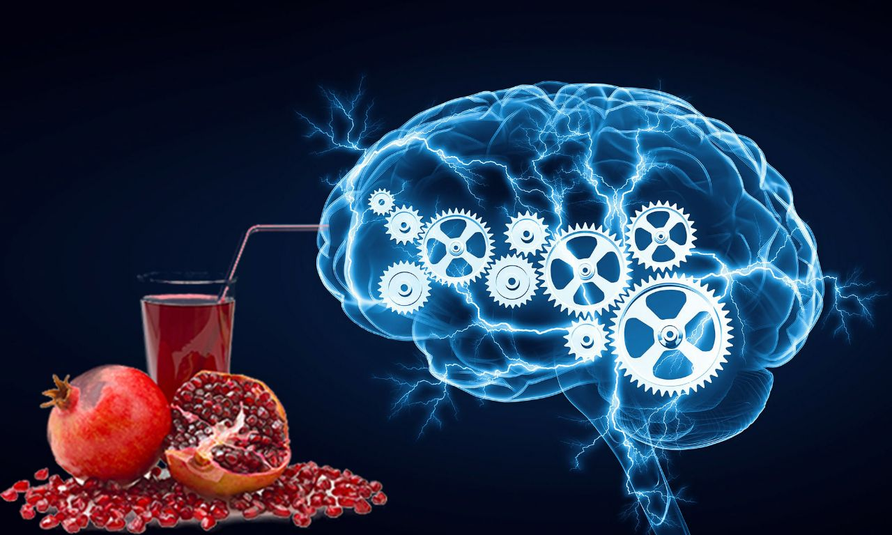 Benefits of Pomegranate Juice for the Brain and Memory