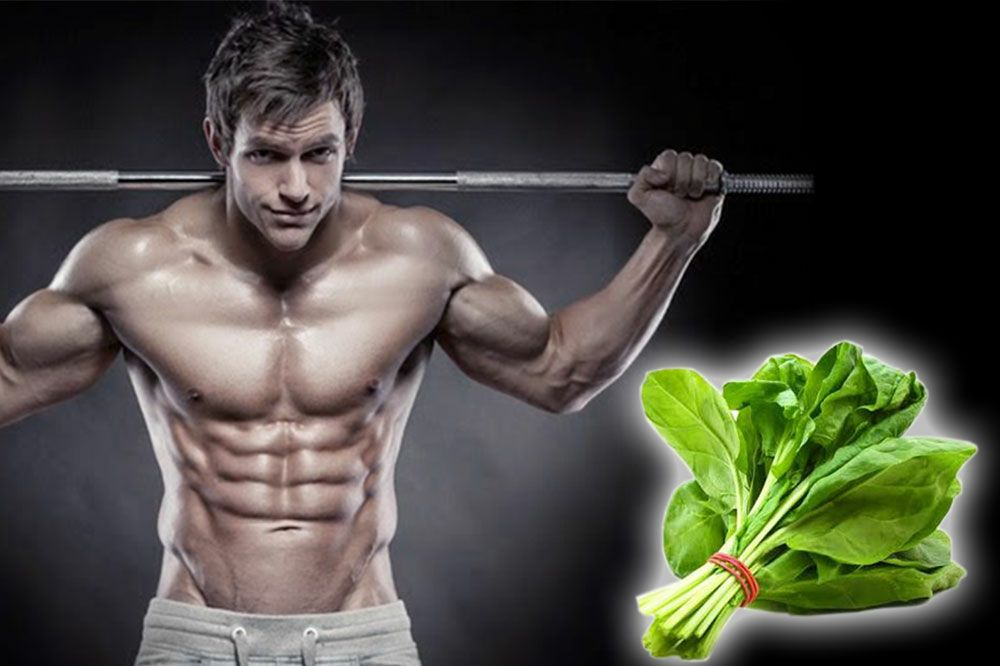 Spinach makes you Stronger and Helps in Building Muscles