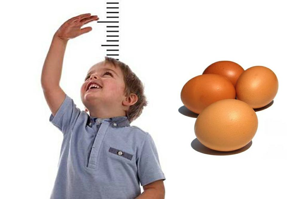 An egg a day appears to help young children grow taller